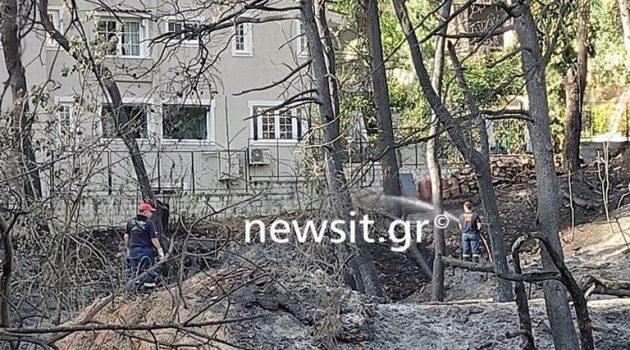 Φωτιά στη Σταμάτα: Τεράστιες οι καταστροφές – Η καταγραφή ζημιών (Video – Photos)
