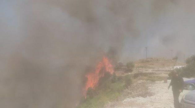 Κεφαλονιά: Φλόγες στις αυλές των σπιτιών – Εκκένωση και δεύτερου οικισμού (Photos)