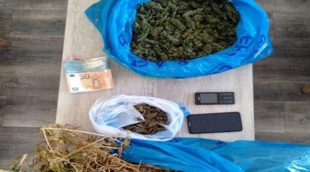 Συνελήφθησαν δύο καλλιεργητές ναρκωτικών σε περιοχή της Πάτρας (Photo)