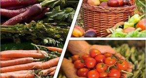 Σημαντική αύξηση στις εξαγωγές τροφίμων της Ε.Ε.