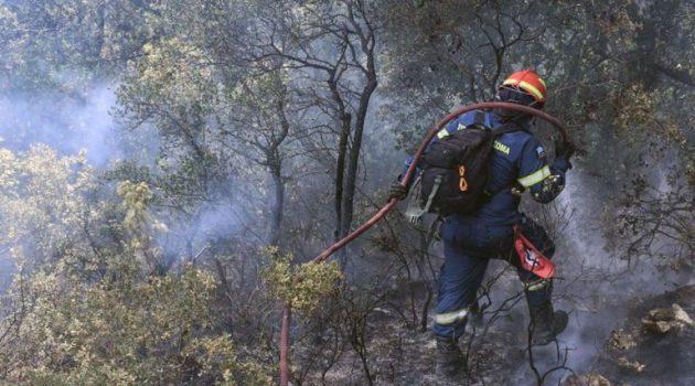 Στις φλόγες το Καλέντζι Κορινθίας – Μεγάλη κινητοποίηση της Πυροσβεστικής