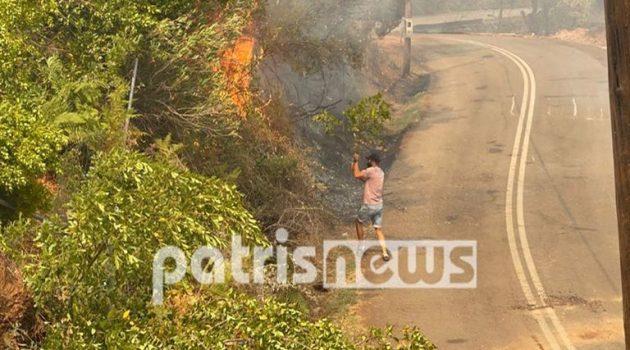 Ηλεία: Εικονολήπτης άφησε την κάμερα και έτρεξε να σβήσει τη φωτιά