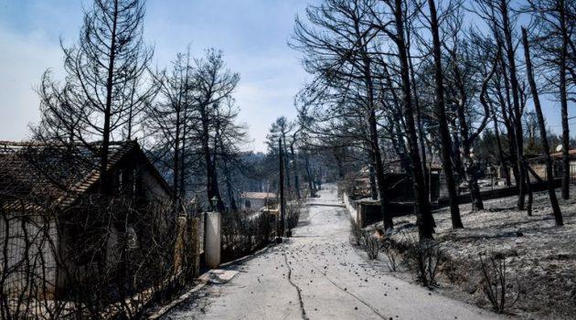 Βιβλική καταστροφή στην Αττική – Η επόμενη μέρα από τη φωτιά (Photos)