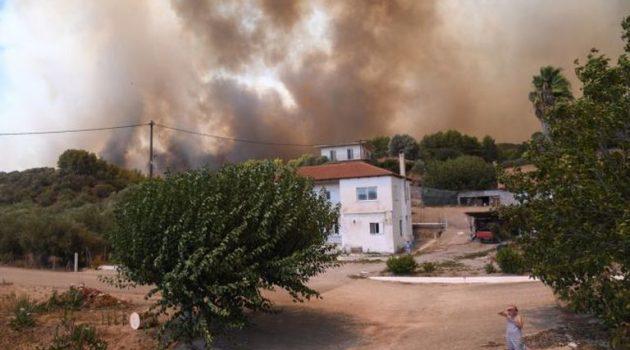 Αρχαία Ολυμπία: Η φωτιά έκανε στάχτη 500.000 ελαιόδεντρα (Video)