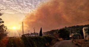 Δωρίδα: Και 2η εστία κοντά στο χωριό Ελαία – Κάηκαν…