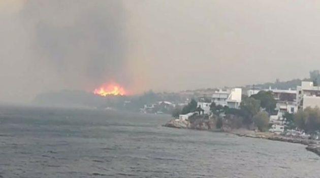Φωτιά στην Κάρυστο: Διάσπαρτα τα μέτωπα