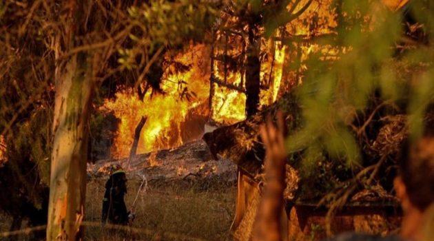 Αχαΐα: 20 καμένα σπίτια και 16 τραυματίες – Κανονικά η κυκλοφορία στην Ε.Ο. (Videos)