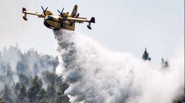 Φωτιά στα Βίλια: Φούντωσε ξανά η πυρκαγιά – Μάχες με νέες αναζωπυρώσεις