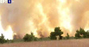 Φωτιά στη Δροσοπηγή: Τεράστια αναζωπύρωση – Αδύνατο να συγκρατηθεί
