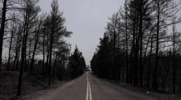 Εύβοια: Διπλασιάζει ο Ο.Α.Ε.Δ. τη διάρκεια διακοπών κοινωνικού τουρισμού στους πυρόπληκτους