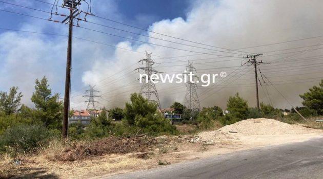 Φωτιά στην Αττική: Νεκρός κάτοικος στην Ιπποκράτειο Πολιτεία