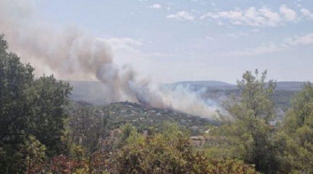 Μεγάλη φωτιά στο Θεολόγο Μαλεσίνας – Εκκενώνεται οικισμός (Video)