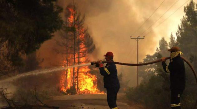 Φωτιά στην Εύβοια: Σταμάτησαν στη θάλασσα οι φλόγες στο Αγριοβότανο