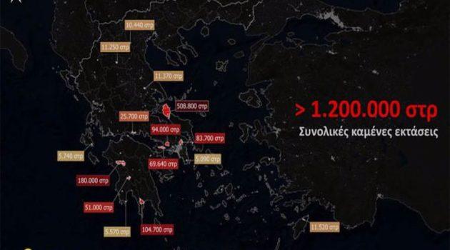 Όλες οι φωτιές του καλοκαιριού σε ένα βίντεο: Κάηκαν 1.200.000 στρέμματα