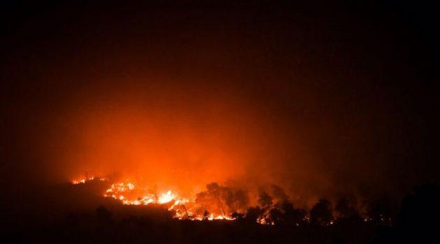 Φωτιά στα Βίλια: Μεγάλη εστία στο Καραούλι – Εκκενώνονται οικισμοί (Video)
