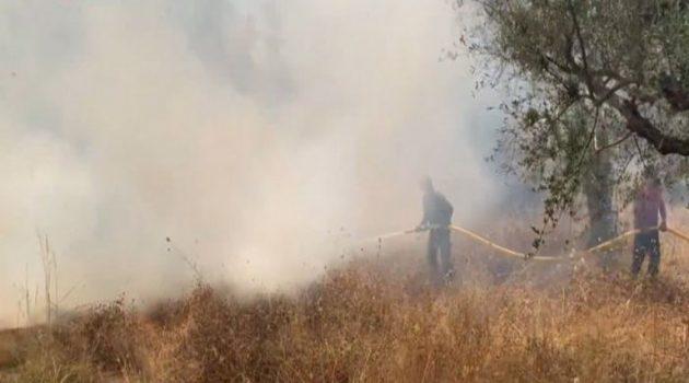 Το απίστευτο «άνοιγμα» της πυρκαγιάς στη φωτιά της Γαβρολίμνης (Videos)