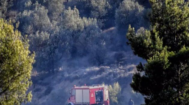Σε εξέλιξη παραμένουν οι πυρκαγιές σε Μεσοχώρια Ευβοίας και Αρχαία Κόρινθο