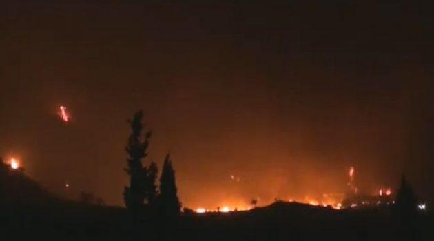 Συνελήφθη ο φερόμενος υπαίτιος της φωτιάς στη Φωκίδα (Video)