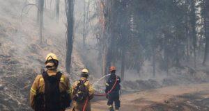 Φωτιά στο Τατόι: Παρανάλωμα το Κτήμα – Οι φλόγες «γλείφουν»…