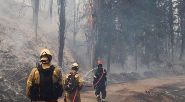 Φωτιά στο Τατόι: Παρανάλωμα το Κτήμα – Οι φλόγες «γλείφουν» το βασιλικό κοιμητήριο