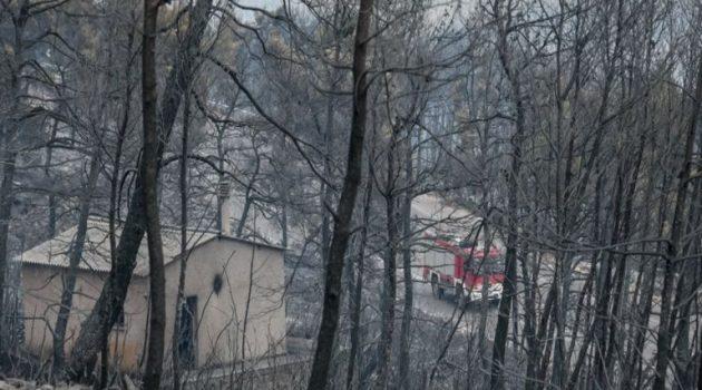 Αγωνία στα Βίλια: Εντοπίστηκε οστό που μοιάζει με ανθρώπινο κρανίο κοντά σε αποθήκη
