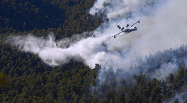 Φωτιά στα Βίλια: Καίγεται πυκνό δάσος στο Όρος Πατέρας (Photos)