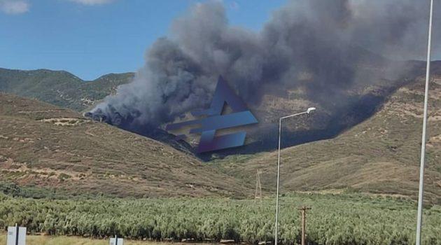 Φωτιά στον Χ.Υ.Τ.Α. Μεσολογγίου προκάλεσε κινητοποίηση της Π.Υ. (Photos)