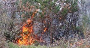 Θεσπρωτία: Σε εξέλιξη δύο πυρκαγιές