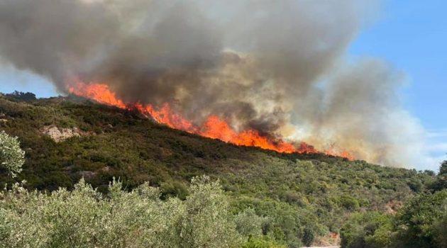 Πυρκαγιά μέρα-μεσημέρι σε Σταμνά και Αστροβίτσα Αιτωλικού (Photos)