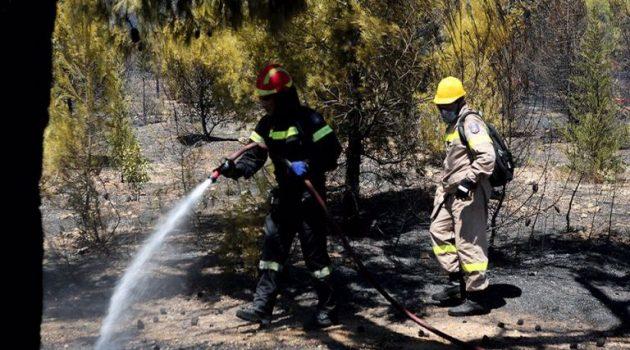 Φωτιά στην Πάρνηθα σε δασική έκταση