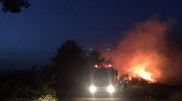 Φωτιά σε δασική έκταση στην Περιφερειακή Αιγάλεω