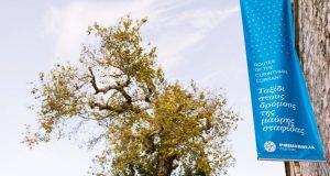 To Φεστιβάλ «Πριμαρόλια» από 25 Σεπτεμβρίου ως 3 Οκτωβρίου στο…