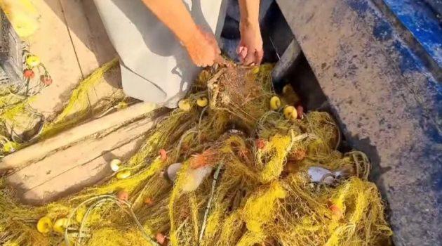 Βόλος: Μίλησε ο ψαράς που κατηγορείται ότι ξαναπέταξε στη θάλασσα το πτώμα ψαροντουφεκά