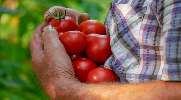 Ολιγοήμερη παράταση για την πιστοποίηση γεωργικών συμβούλων