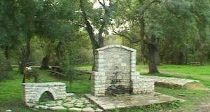 2000: Το δάσος του Φράξου στο Λεσίνι Αιτωλοακαρνανίας (Video –…