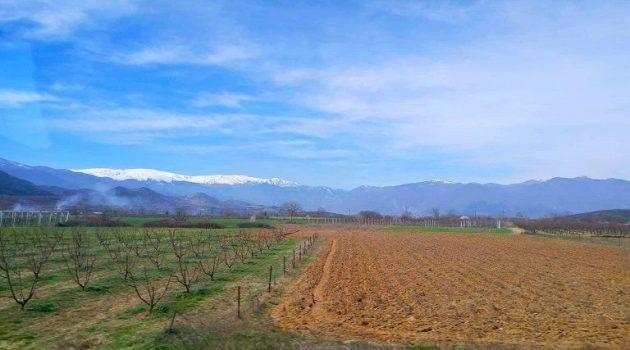 Ο.Π.Ε.Κ.Ε.Π.Ε.: Έλεγχοι για την πρώτη δάσωση γεωργικών γαιών
