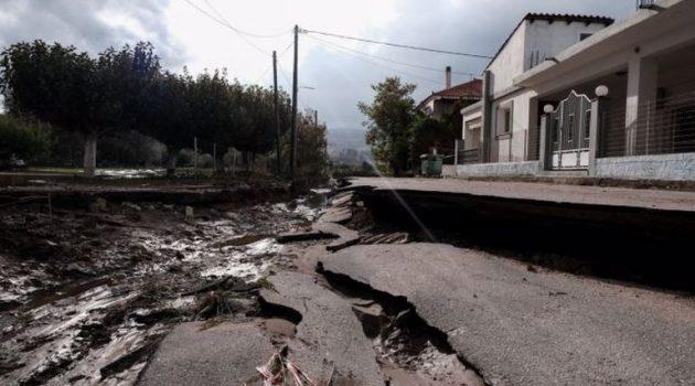 Εύβοια: Η «Αθηνά» σάρωσε τις πυρόπληκτες περιοχές, οι ζημιές που άφησε πίσω της
