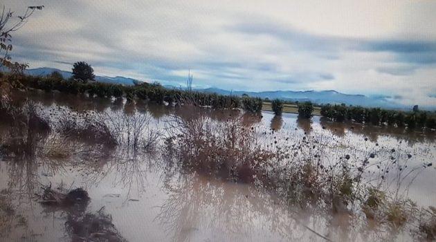 Γέμισαν… λίμνες τα χωράφια στον Πλάτανο (Photos)